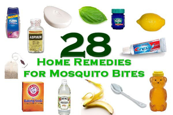 28 Home Remedies for Mosquito Bites