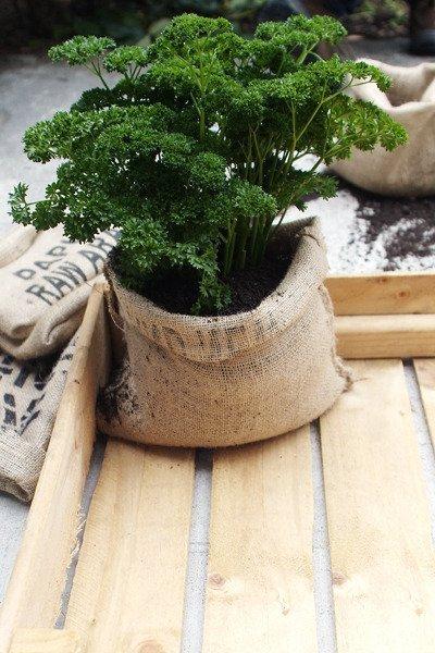 Coffee Bag Planter Pots