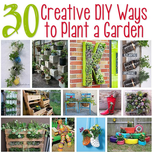 30 Creative DIY Ways to Plant a Garden