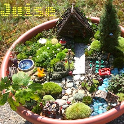 Tour of a Fairy Garden
