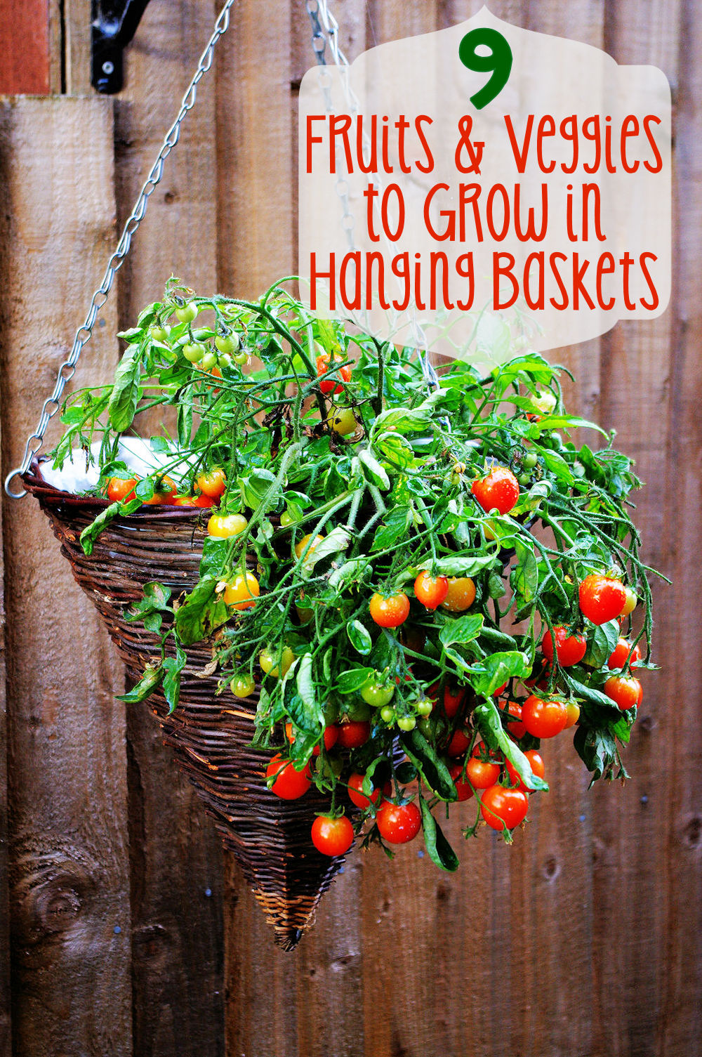 9 Fruits and Veggies to Grow in Hanging Baskets